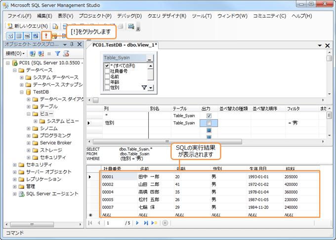 SQL実行結果の表示